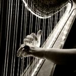 Руки перебирают струны извлекая звуки для монтажа