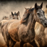 табун лошадей скачет