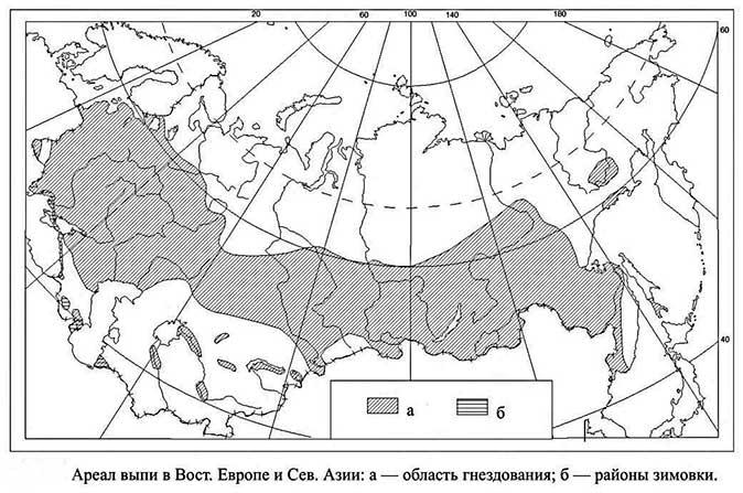 Карта, где показаны места обитания большой выпи к публикации «Звуки выпи птицы»